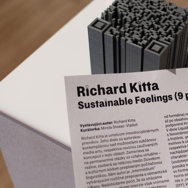 17 - Richard Kitta – Sustainable Feelings (9 pcs)