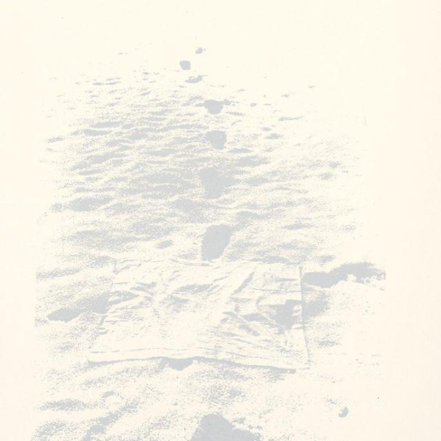 Festival / Stopy v snehu