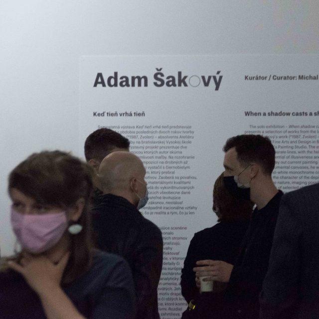 7 - Adam Šakový, Keď tieň vrhá tieň/When a shadow casts a shadow
