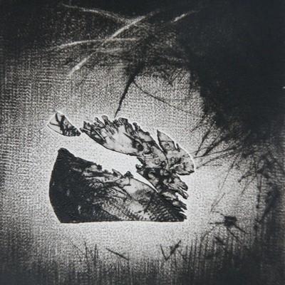 Malgorzata Chomicz – grafika
